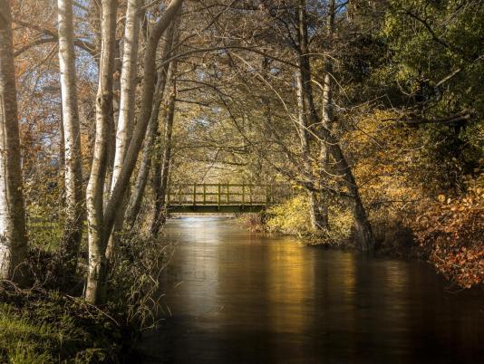 River Lugg running through the park at Rockbridge