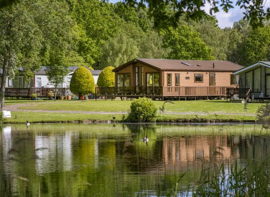 Lake edge luxury lodges at Pearl Lake photo