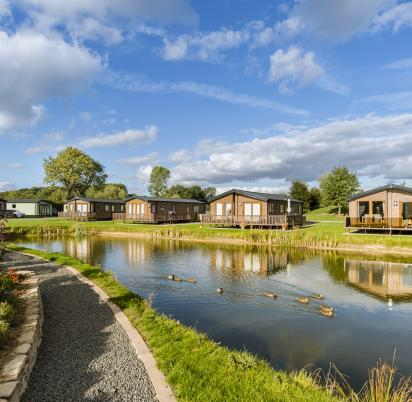 Holiday homes at Arrow Bank