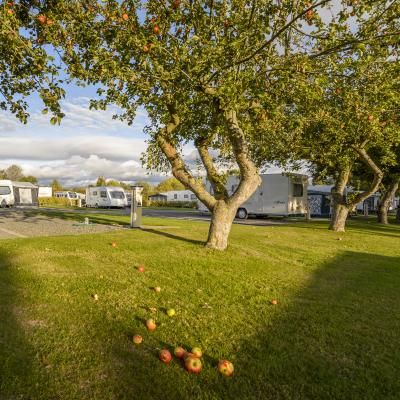 Seasonal touring pitches 5 star caravan park Herefordshire